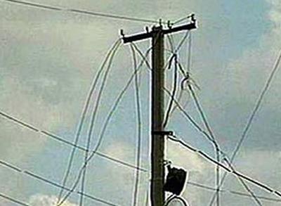 В Краматорске упавшее дерево оставило без электричества целый квартал